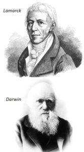 Ernährungsplan Epigenetik Lamarck