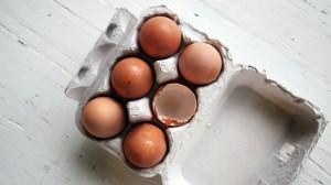 Protein Eiweiß Eier Ernährungsplan